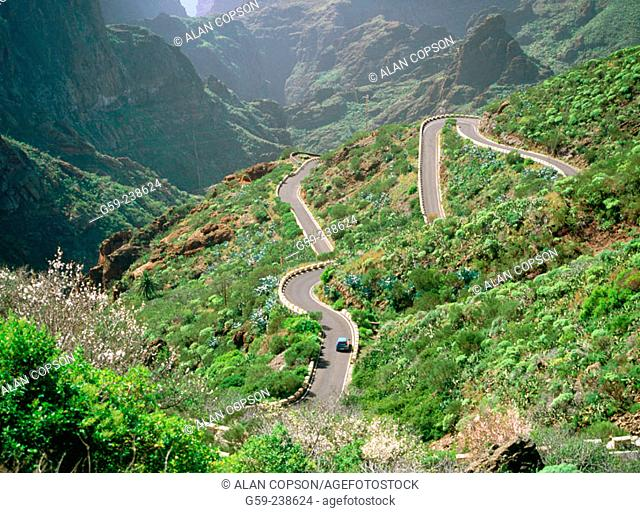 Road above Masca in Tenerife. Canary Islands. Spain