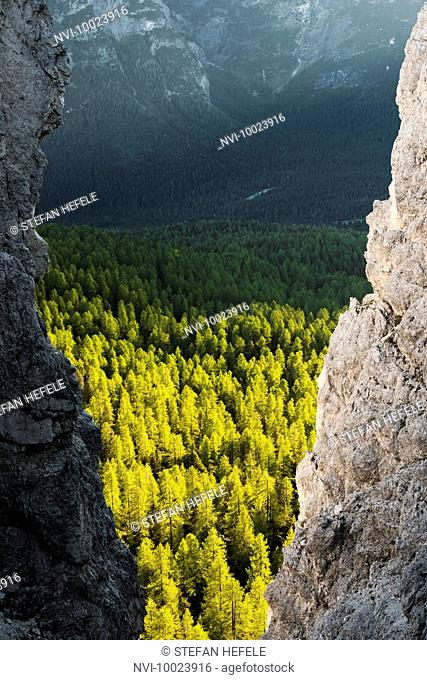 Crevice, Dolomites, Alps, South Tyrol, Italy, Europe