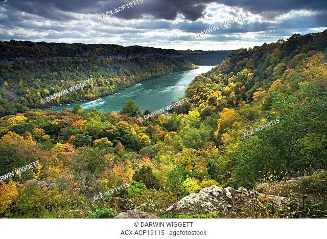 Niagara Glen Nature Reserve and the Niagara River, Niagara Falls, Ontario, Canada