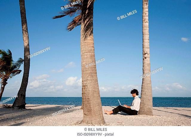 Businessman sitting by palm tree on beach using laptop