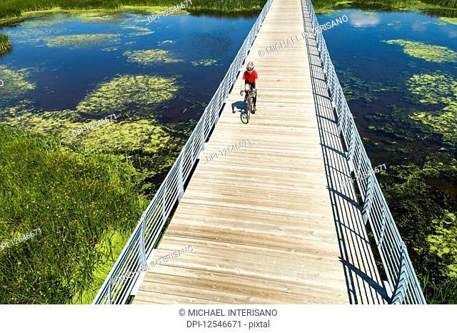 A female cyclist on a bridge crossing a swampy pond, East of Calgary; Alberta, Canada