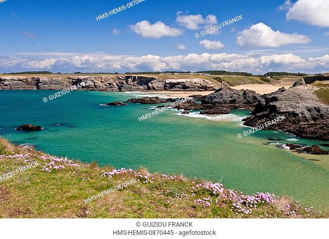 France, Morbihan, Belle Ile en Mer, the wild coast, along the GR340 between the Pointe des Poulains and Herlin beach (Bangor village), Donnant beach