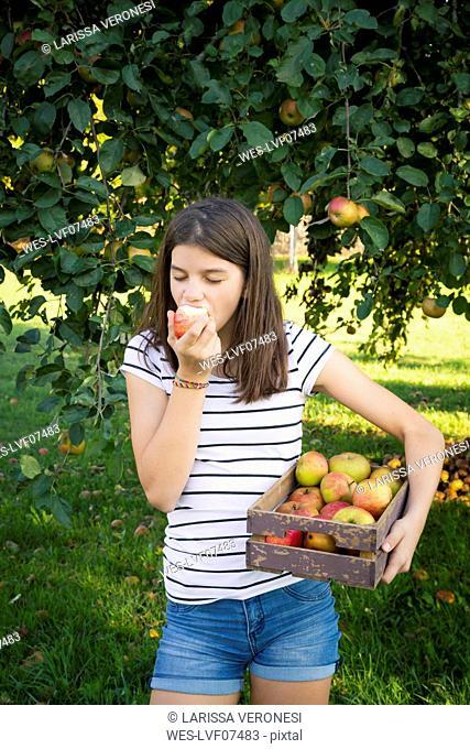 Girl eating freshly harvested apple