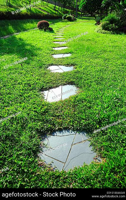 path on grass field