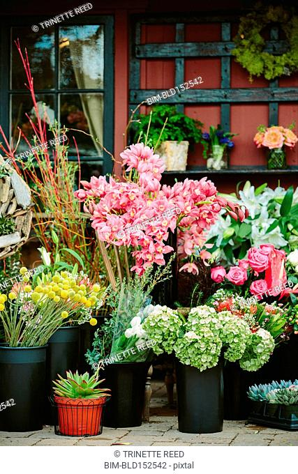 Fresh flowers outside florist shop
