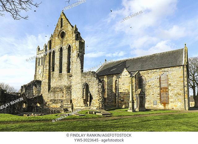 12th Century Kilwinning Abbey, built and occupied by Tironensian Monks from Kelso and was then used as a Presbeterian Parish Church, Kilwinning, Ayrshire