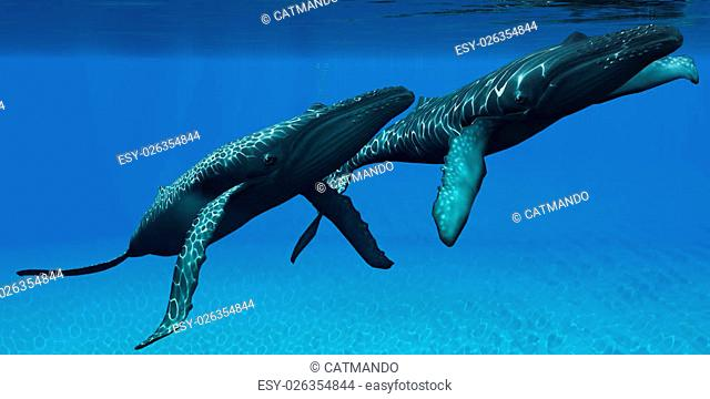 Two Humpback whales come to the surface of ocean waters to breath