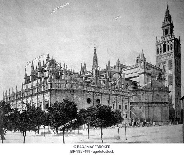 One of the first autotypes of the Cathedral of Seville, historical photograph, 1884