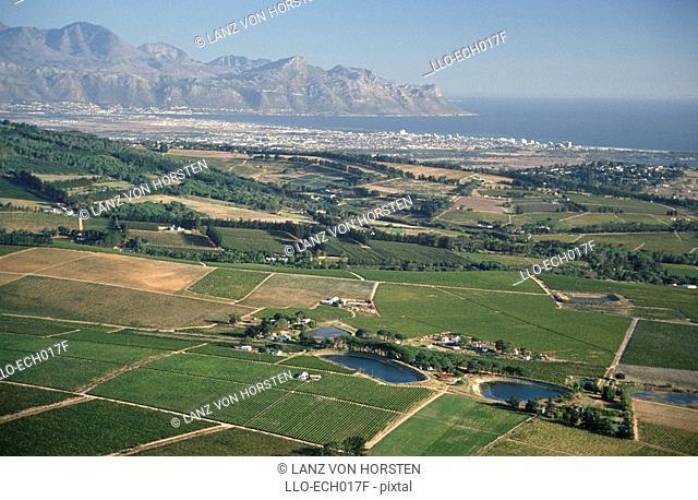 Aerial View of Coastal Vineyards  Helderberg Area, False Bay, Western Cape Province, South Africa