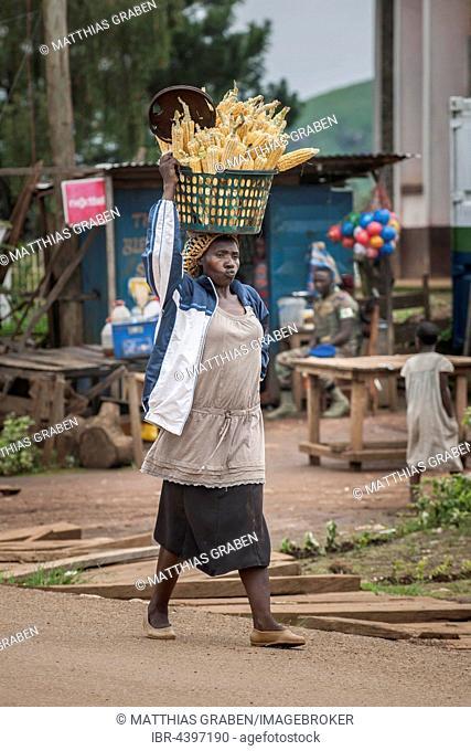 Corn seller on way to market, street scene, Fundong, Northwest Region, Cameroon
