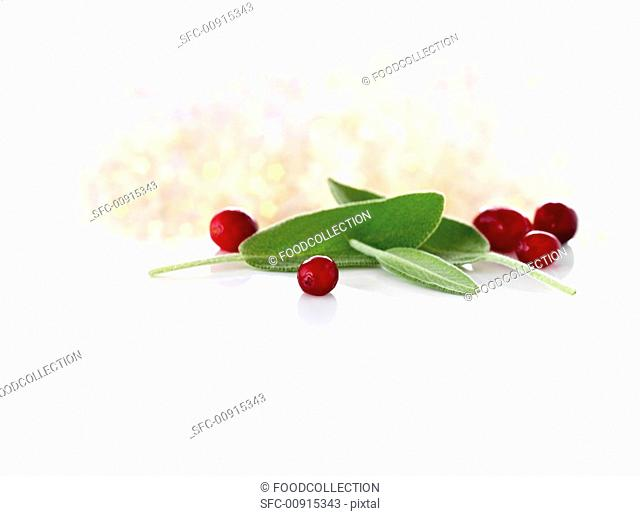 Sage and cranberries