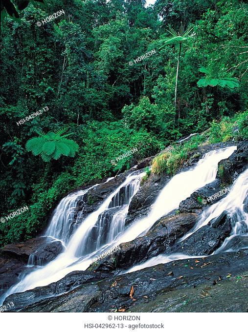 Waterfall in Atherton Tableland Queensland Australia