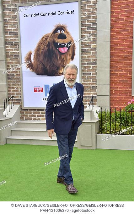 Harrison Ford at the premiere of the movie 'The Secret Life of Pets 2' at the Regency Village Theater. Los Angeles, 02.06.2019 | usage worldwide