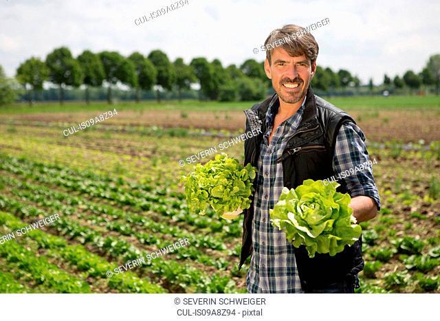Portrait of organic farmer holding lettuce