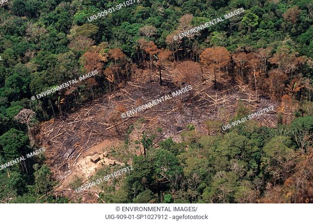 DEFORESTATION, BRAZIL. Amazon, vicinity Rio Branco. Patches of forest burnt by migrant slash and burn cultivators to clear land to plant crops