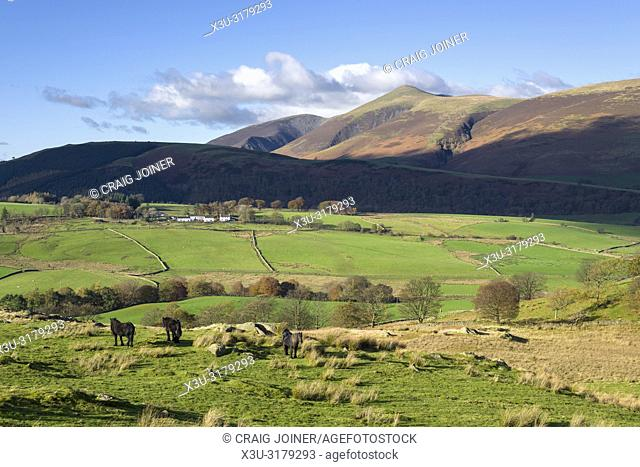Goosewell Farm viewed from Low Rigg with Latrigg and the Skiddaw range beyond in the English Lake District National Park, Cumbria, England