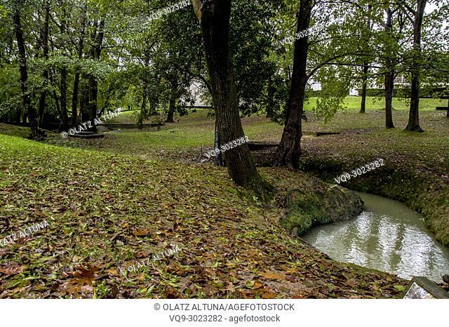 River in rain forest, Zamudio, Bizkaia, Basque Country, Spain, Europe