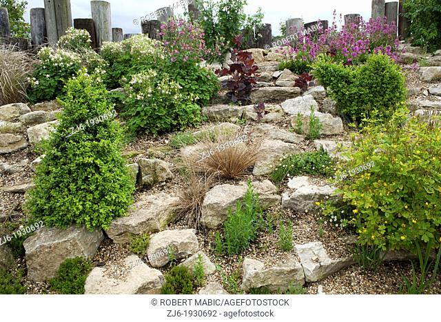Rock garden planted with drought tolerant plants, Kent England