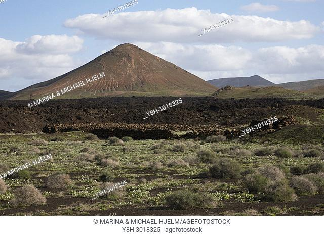 Volcanic Mount, Canary Islands; Lanzarote; Spain