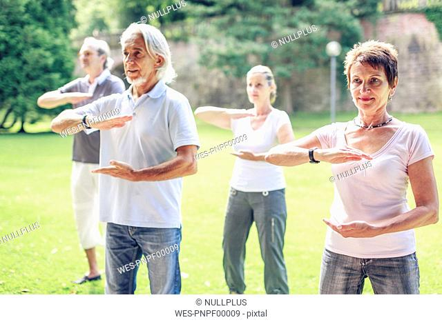 Group of seniors doing Tai chi in a park