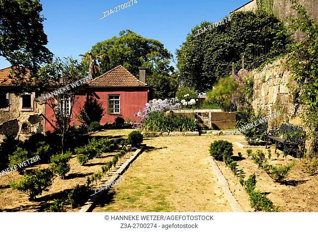 Camellia garden in Vila Nova de Gaia, Portugal