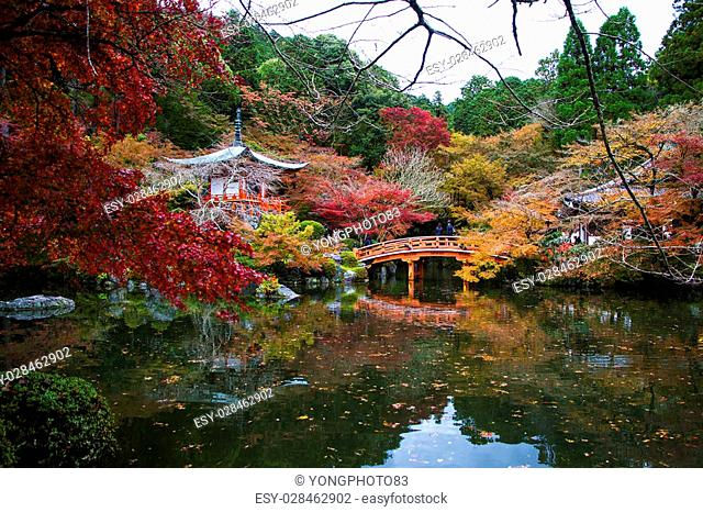 Daigoji is an important temple of the Shingon sect of Japanese Buddhism and a designated world heritage site. The large temple complex stands southeast of...