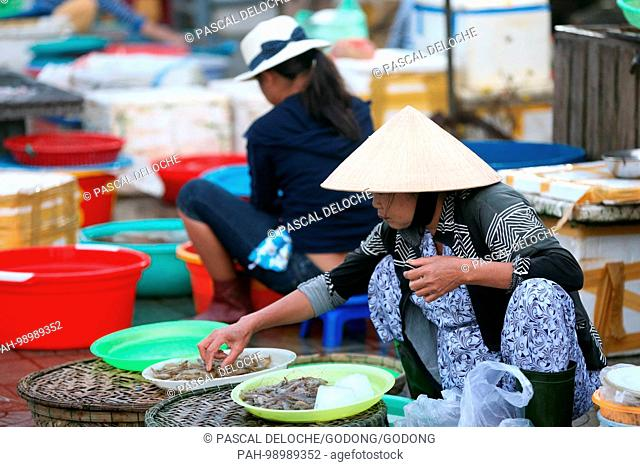 Vietnamese women at market stall with seafood. Hoi An. Vietnam. | usage worldwide. - Hoi An/Quang Nam/Vietnam