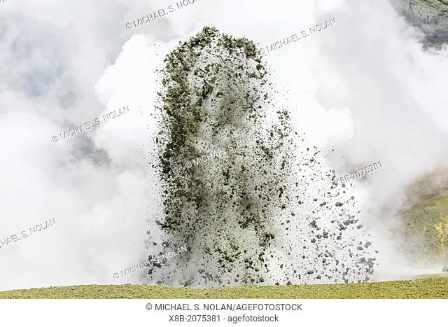 Mud being ejected from the caldera floor of an active andesite stratovolcano on White Island, North Island, New Zealand