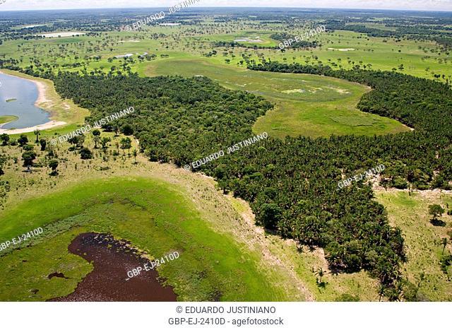 Fly over on the Pantanal Sulmatogrossense, Corumbá, Mato Grosso do Sul, Brazil