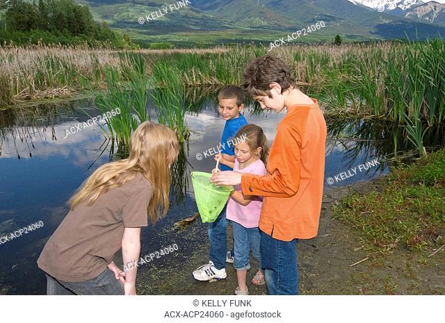 Children enjoy the fascination of the marsh near Valemount, Thompson Okanagan region, British Columbia, Canada