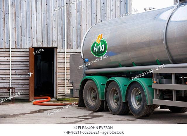 Arla milk tanker loading milk at dairy farm, Dumfries, Scotland
