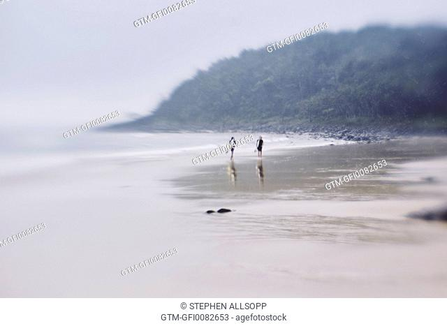 Surfers walking along a near deserted beach with rainforest backdrop