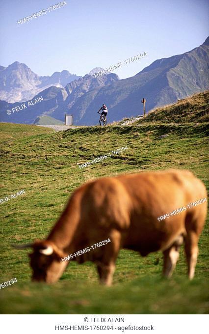 France, Haute Garonne, Bagneres de Luchon, Superbagneres downhill mountain bike toward Bagneres de Luchon
