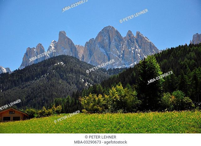 Italy, South Tirol, Villnösstal (Val di Funes), St. Magdalena, Ranui, Alpine grassland, Geislerspitzen (mountains)
