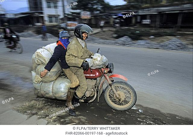 Vietnam - Transporting live fish from market by motorcycle, Thai Nguyen Province