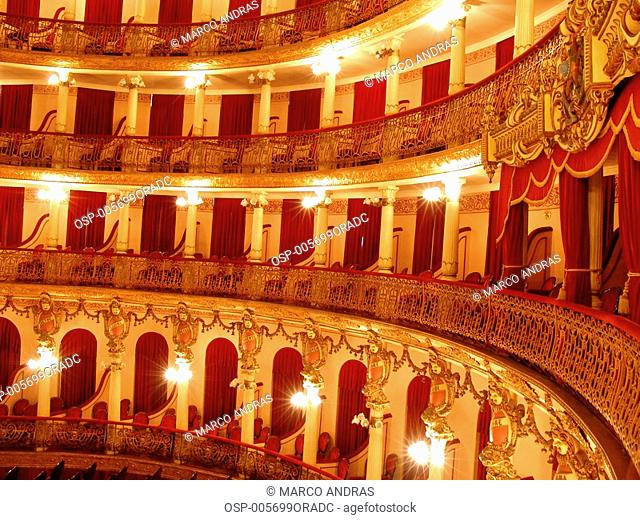 a view of the manaus theatre internal part