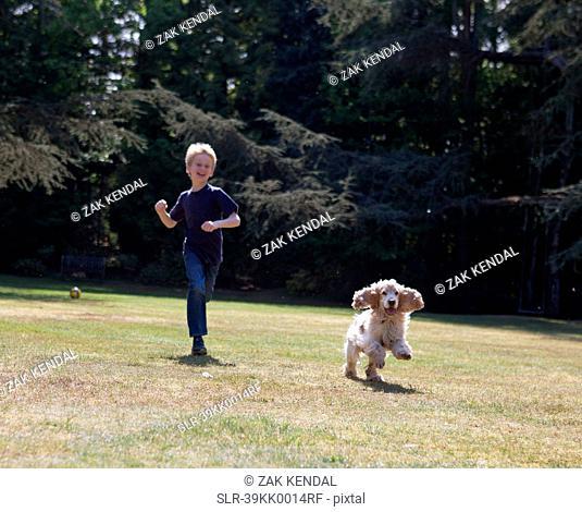 Boy playing with dog in backyard