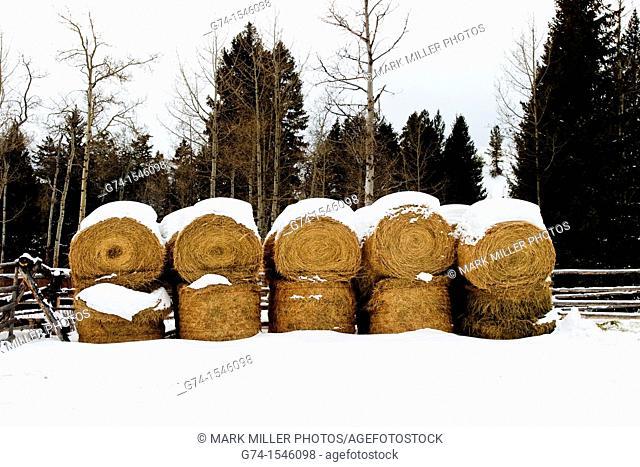 Montana winter ranch, USA