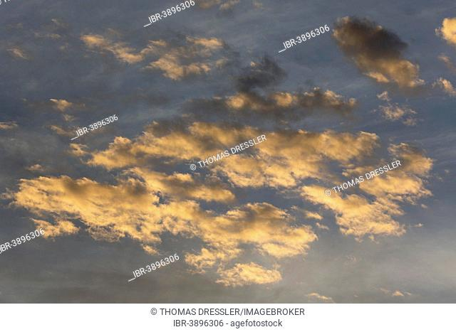 Altocumulus clouds in sunset light against the high-level cirrostratus clouds, Andalusia, Spain