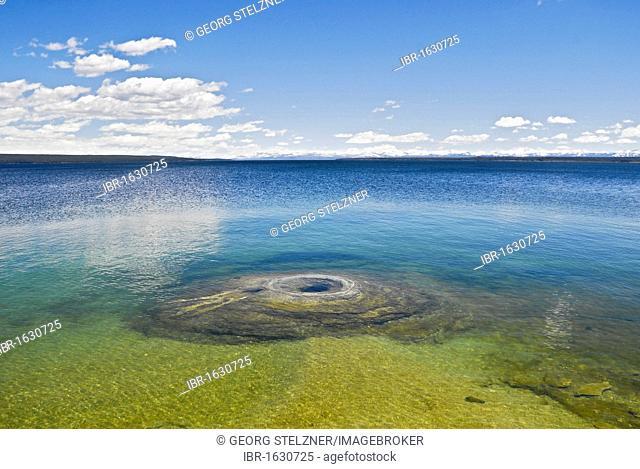Fishing Cone, West Thumb Geyser Basin, Yellowstone Lake, Yellowstone National Park, Wyoming, USA