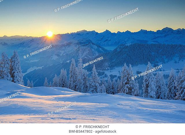 view from Mount Rigi to wintry mountain scenery at sunrise, Switzerland, Berner Alpen