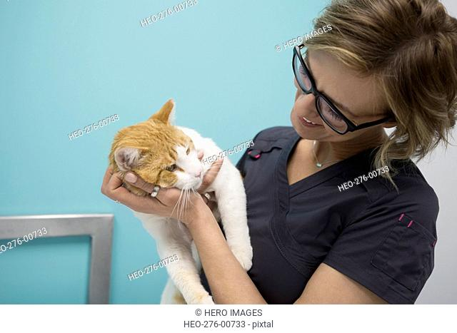 Veterinarian holding and smiling at cat