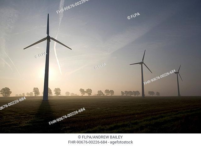 Windfarm, wind turbines in dawn mist, with stubble field and trees, East Somerton, Norfolk Broads, Norfolk, England