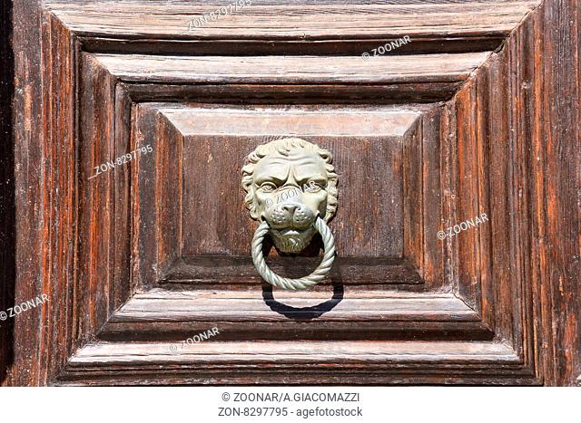 Photo Picture of lion#39;s head on an wooden door