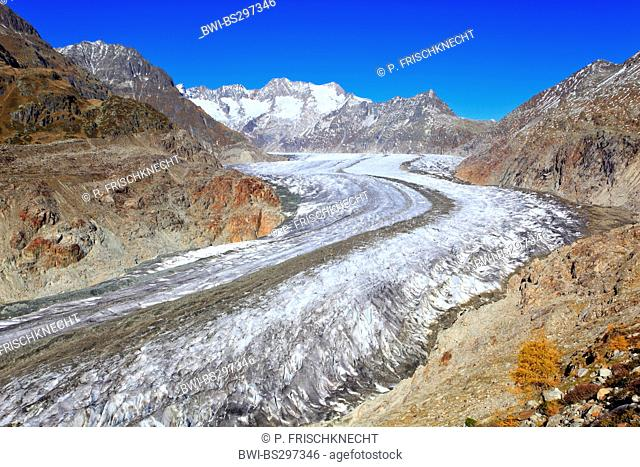 Great Aletsch Glacier, the largest glacier in the Alps, and the Wannenhorns, Switzerland, Valais