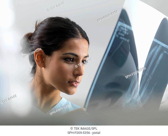 Doctor examining an X-ray