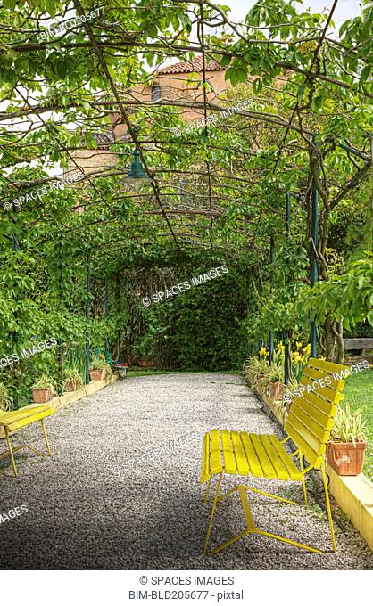Bench in Large Garden