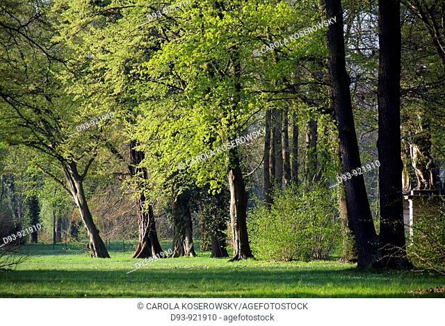 Nature; Spring; Landscape; Parc; Tree