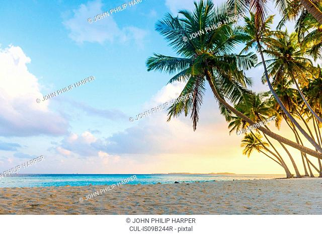 Sunset at beach, Maldives