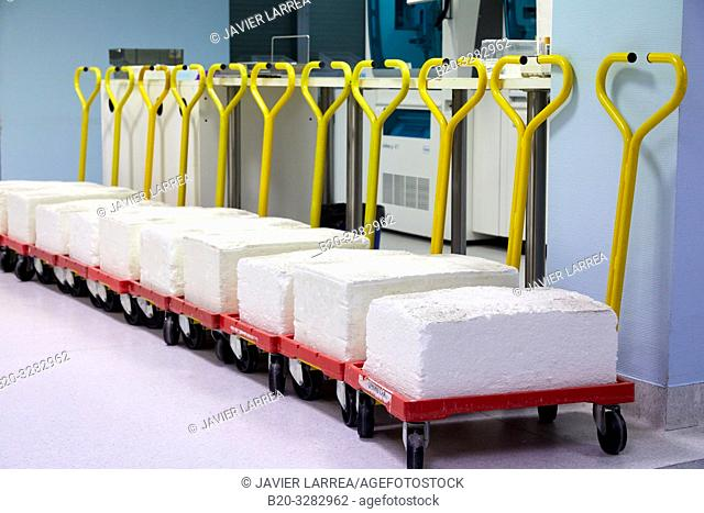 Hand trucks with ambulatory samples, Clinical analysis, Hematology, Hospital Donostia, San Sebastian, Gipuzkoa, Basque Country, Spain